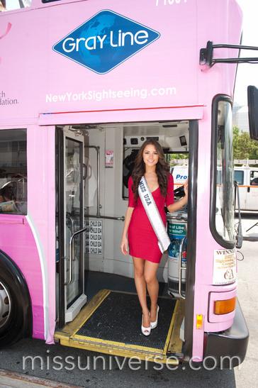 The Bing Pink Sightseeing Bus
