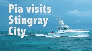 UNIVERSAL TRAVELS Miss Universe 2015 Pia Wurtzbach Visits Stingray City